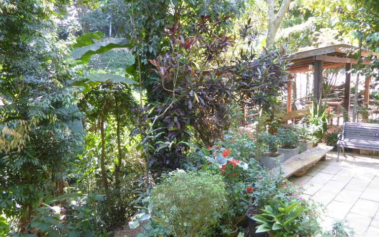 Chiangmai2_56