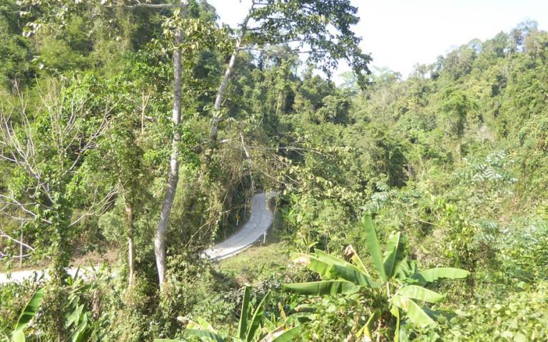 Chiangmai2_63