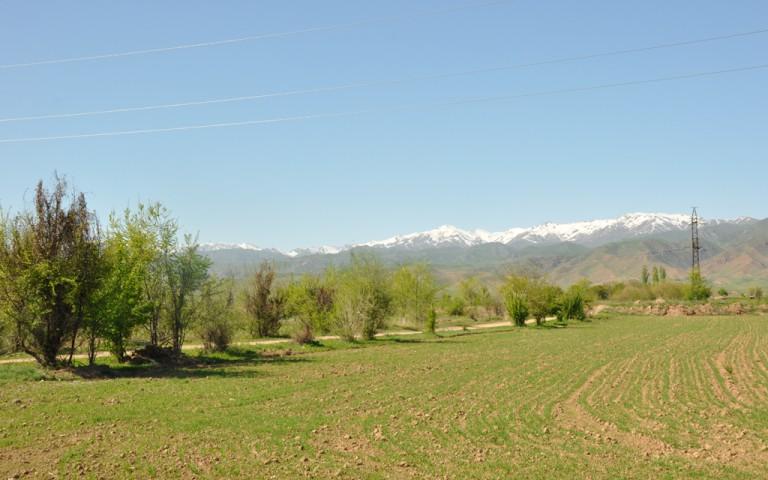 Kirgistan2_6