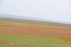 Kasachstan_1